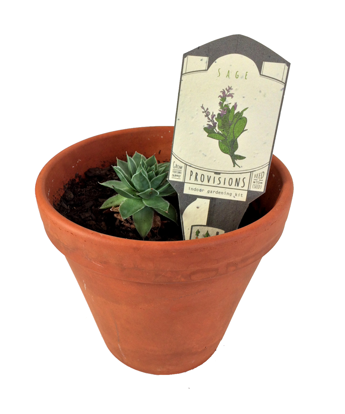 Provisions - Indoor Gardening Kit - Plant Tags